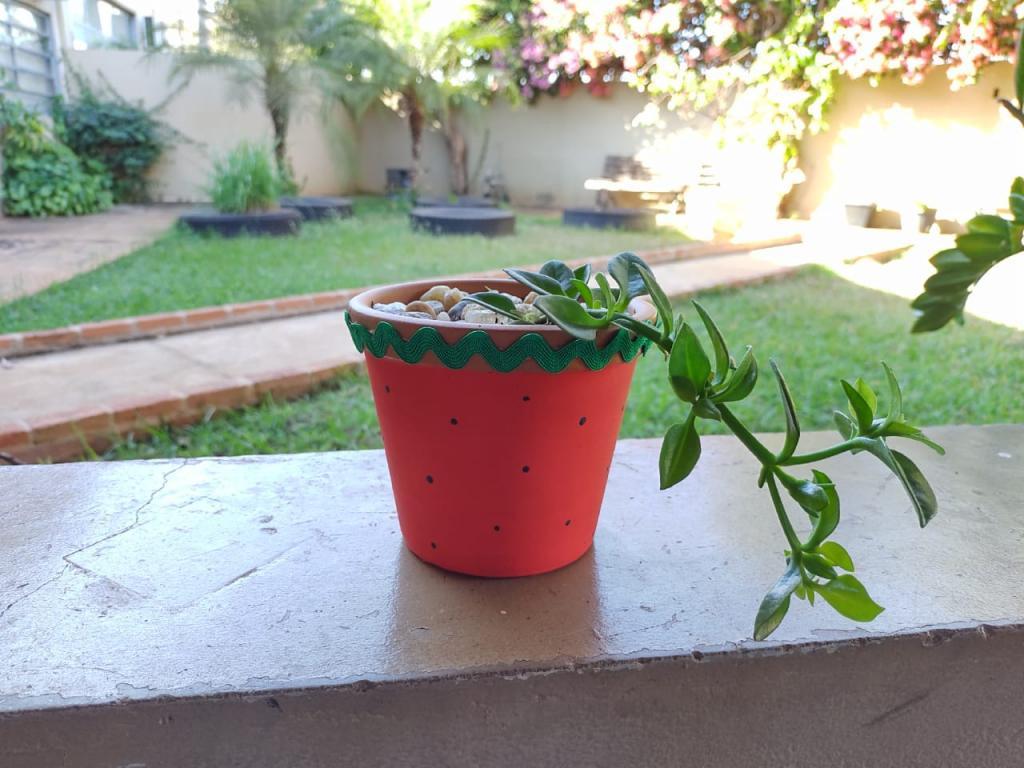 [Foto da galeria do post Plantio em Vaso de Cerâmica]